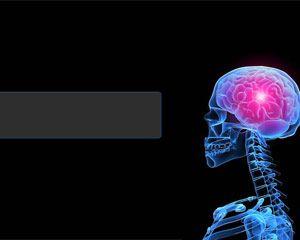 دانلود قالب پاورپوینت طرح مغز و اعصاب