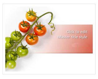 دانلود قالب پاورپوینت طرح گوجه فرنگی