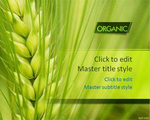 دانلود 3 قالب پاورپوینت طرح کشاورزی ارگانیک