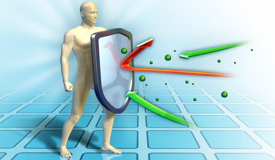 دانلود پاورپوینت سیستم ایمنی بدن