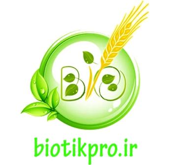 پاورپوینت بیماری های باکتریایی سبزی و صیفی
