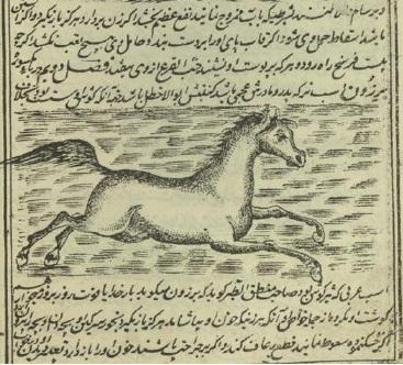 دانلود کتاب کمیاب خواص الحیوان (ترجمه ای فارسی از