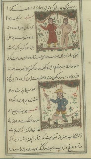 دانلود نسخه خطي و ناياب کتاب طب دارا از شيخ محمد