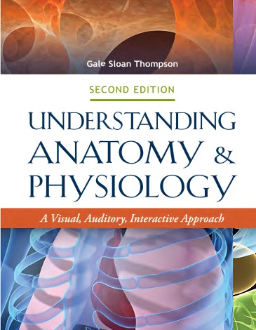 Workbook to Accompany Understanding Anatomy & Physiology