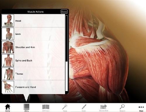نرم افزار سه بعدی وتعاملی آناتومی عضلات وماهیچه های بدن انسان(ویندوزی)