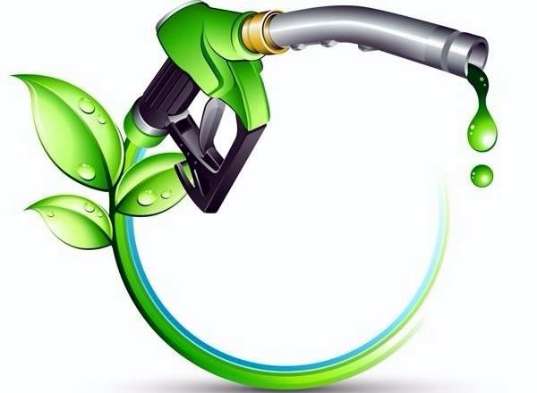 دانلود پاورپوینت سوخت های بیومسی