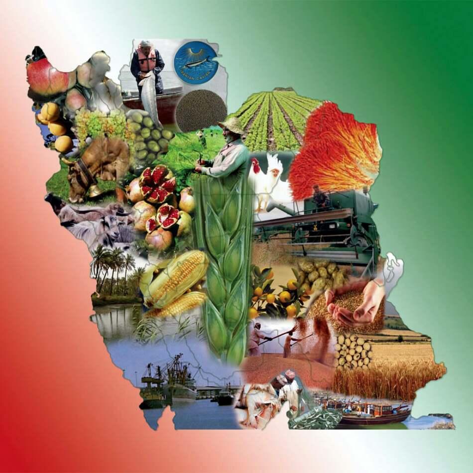 دانلود پاورپوینت خصوصی سازی در بخش کشاورزی ایران
