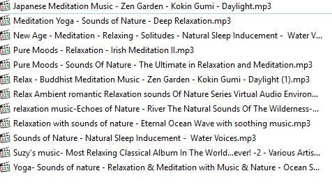 مجموعه موسیقی های تعادل بین جسم و روح، موسیقی های ریلکس مدیتیشن