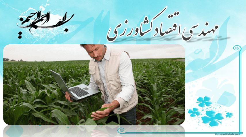 پاور پوینت معرفی رشته مهندسی اقتصاد کشاورزی(19 اسلاید)