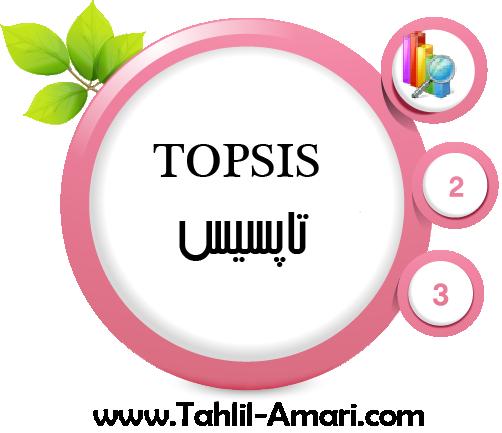 سه فایل اموزشی نرم افزار topsis به زبان فارسی