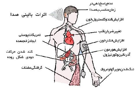 دانلود پاورپوینت صدا و اثرات آن بر بدن