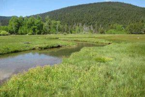 دانلود پاورپوینت هیدرولوژی مرتع(Range Hydrology)