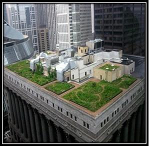 دانلود بام سبز شهرسازی