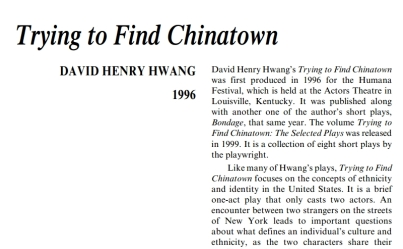نقد نمايشنامه Trying to Find Chinatown by David Henry Hwang