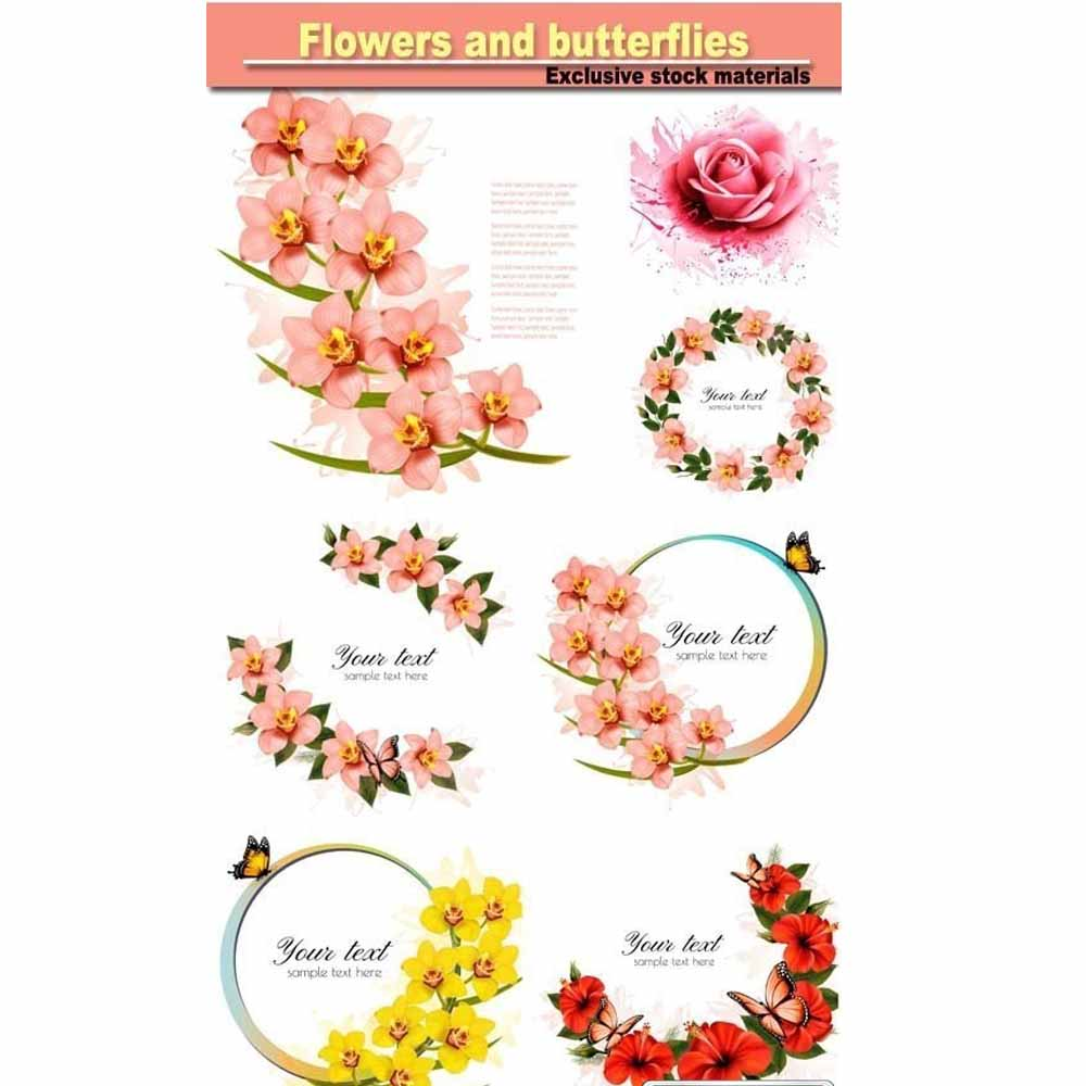 پروژه 8 عکس گل ها و پروانه ها با کیفیت بالا