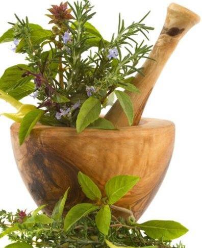 دانلود طرح جابر با موضوع گیاهان دارویی  به همراه دفتر کار نما