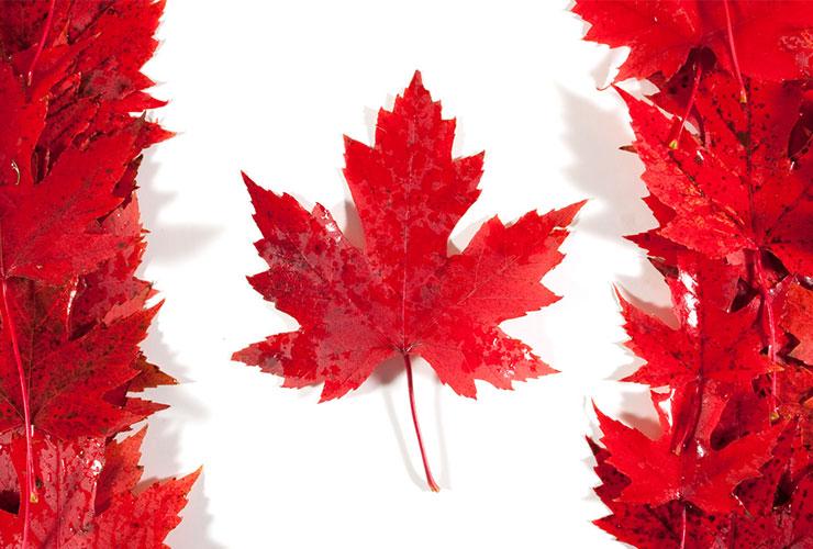 همه چیز درباره کانادا