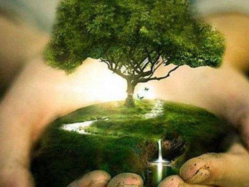 آشنایی بامفاهیم سیستم مدیریت زیست محیطی