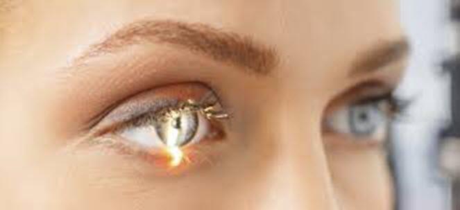 نگاهي به داخل چشم ها