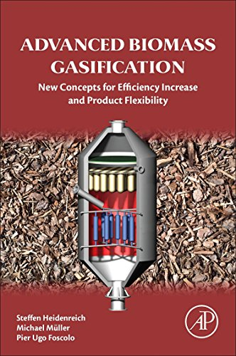 Advanced Biomass Gasification. New Concepts for Efficiency Increase and Product Flexibility