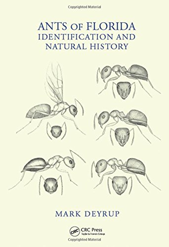 Ants of Florida: identification and natural history