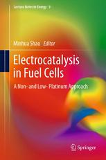 Electrocatalysis in Fuel Cells: A Non- and Low- Platinum Approach