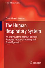 The Human Respiratory System: An Analysis of the Interplay between Anatomy, Structure, Breathing and Fractal Dynamics