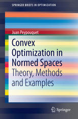 Convex Optimization in Normed Spaces: Theory, Methods and Examples