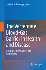 The Vertebrate Blood-Gas Barrier in Health and Disease: Structure, Development and Remodeling