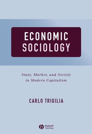 Economic Sociology: State, Market, and Society in Modern Capitalism
