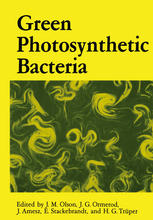 Green Photosynthetic Bacteria