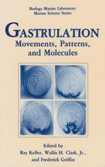 Gastrulation: Movements, Patterns and Molecules
