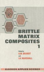 Brittle Matrix Composites 1