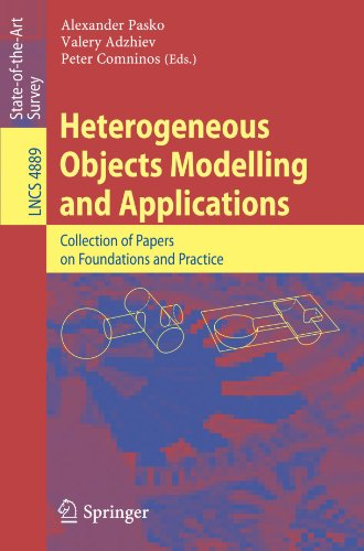 Heterogeneous Objects Modelling and Applications: Collection of Papers on Foundations and Practice