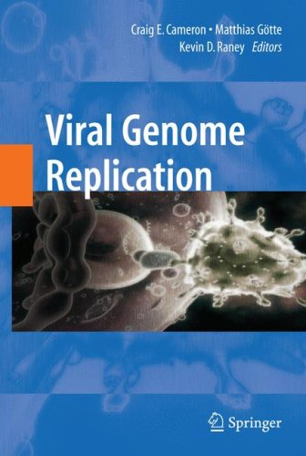 Viral Genome Replication