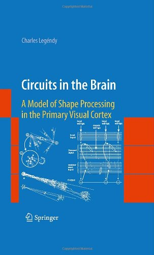 Circuits in the Brain: A Model of Shape Processing in the Primary Visual Cortex