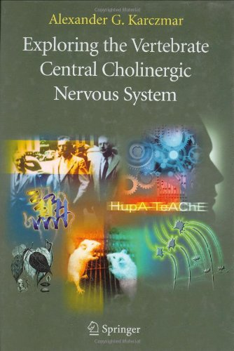 Exploring the Vertebrate Central Cholinergic Nervous System