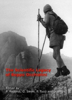 The Scientific Legacy of Beppo Occhialini