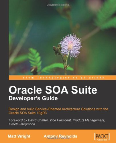 Oracle SOA Suite Developers Guide