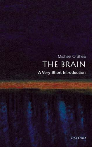 the brain. a very short introduction