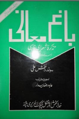 باغ معانی؛ تذکره شعرای فارسی (سده دوازدهم قمری)