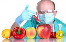 موجودات اصلاح شده ژنتیکی و دلیل رشد آن ؟