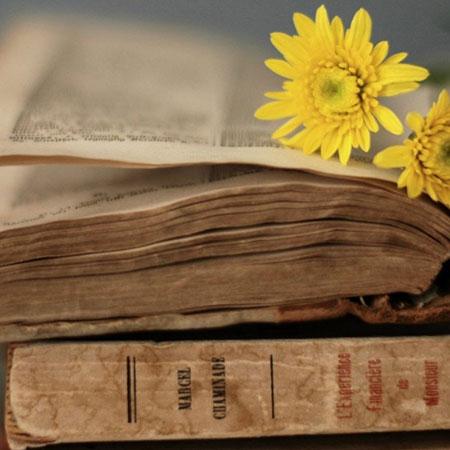 دانلود کتابهای  قانون ابن سینا(pdf)