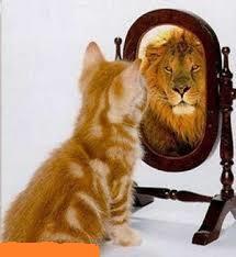 لوح فشرده برنامه ذهن برای اعتماد بنفس وخود باوری