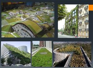 نگاهی به اصول معماری سبز