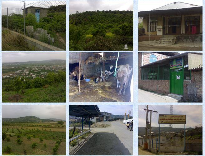 دانلود پروژه روستای درونکلا از توابع استان مازندران شهرستان بابل(درس روستا 2 )