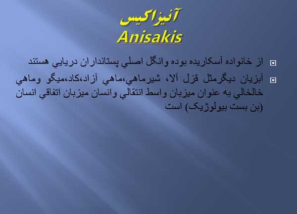 آنيزاکيس