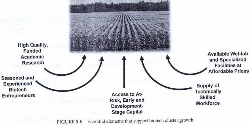"""ترجمه مقاله""""5 عنصر اساسی برای رشد خوشه های بیوتکنولوژی """"Five Essential Elements for Growing Biotechnology Clusters"""