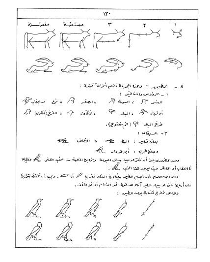 مفتاح اللغه المصر