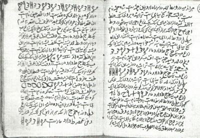 گنج نامه حکیم وزیر(نایاب)